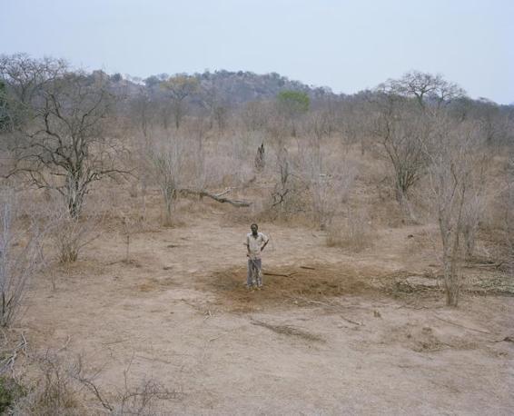 http://images.corriereobjects.it/gallery/Cronache/2010/03_Marzo/elefante/1/img_1/12.Elephant_Story-Copyright_David_Chancellor_672-458_resize.jpg