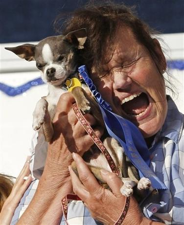 Princess il cane piu 39 brutto del mondo for Princess cane