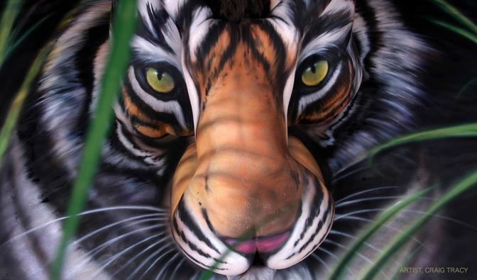 """Tre modelle formano la testa di una tigre: la straordinaria opera di body painting è stata realizzata dall'artista americano Craig Tracy nel suo studio di New Orleans su richiesta dell'associazione """"Save China's Tigers"""". Obiettivo: salvare questo meraviglioso felino dall'estinzione raccogliendo fondi in vista del 14 febbraio, quando inizia l'anno cinese. Un anno, il 2010, che l'Onu ha deciso di dedicare proprio alla tigre (© Nigel Blundel/Exclusivepix)"""